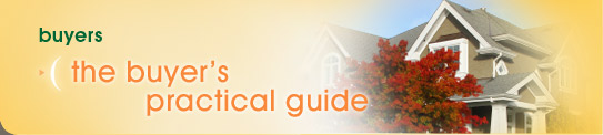 Buyers: The Buyer's Practical Guide